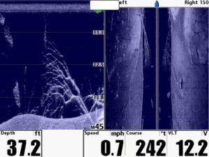 down-vs-side-imaging-fishfinder