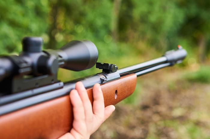 Air rifle with optic